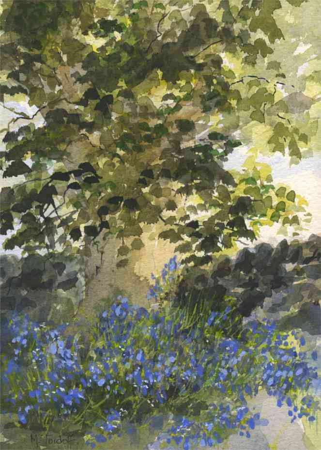 Bluebells in the Shade