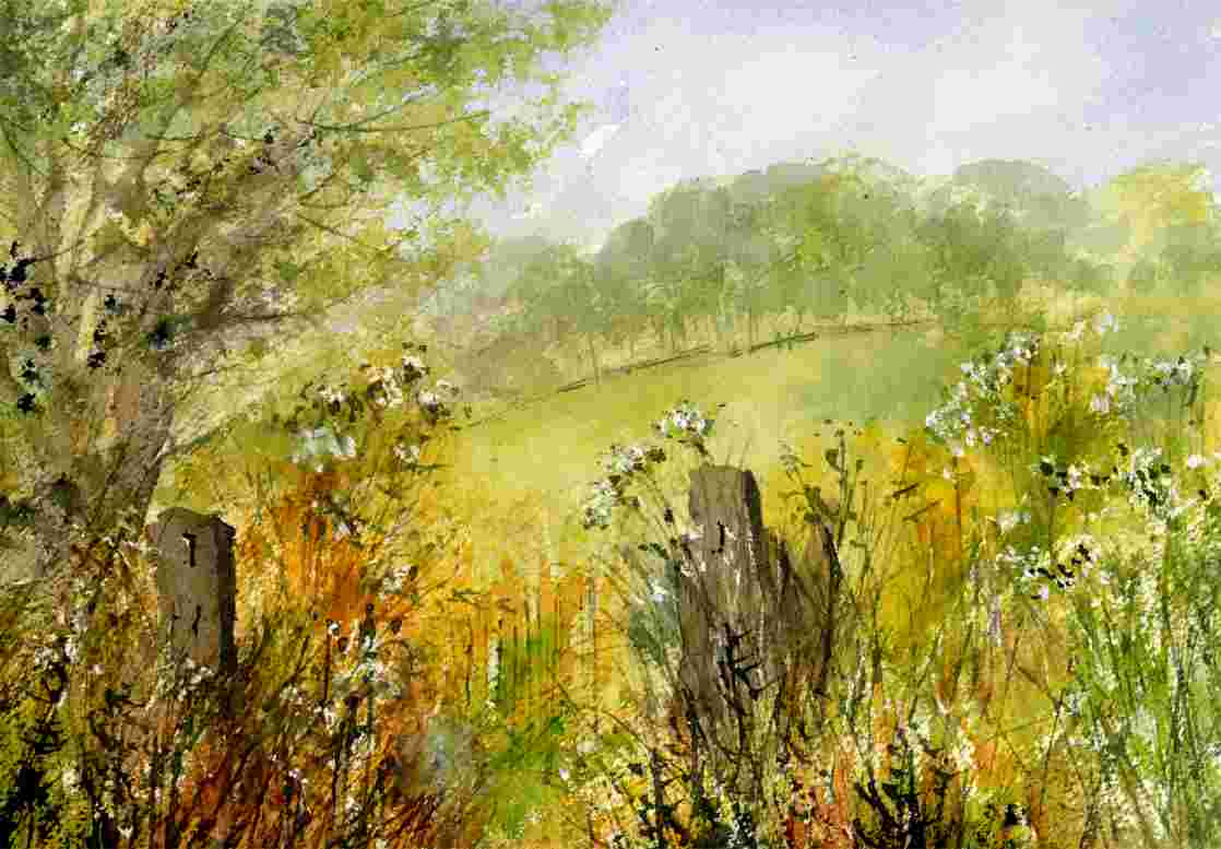 Hedgerows In The Gateway Pictures
