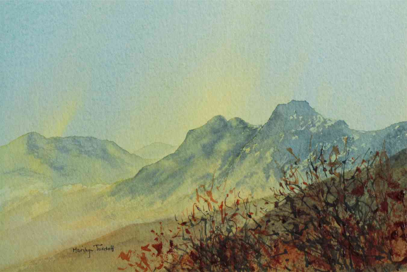 Langdale Pikes and the prickly bush